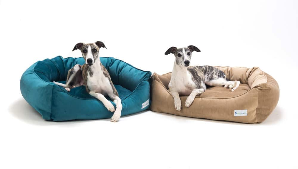 Product Photography of two dog beds
